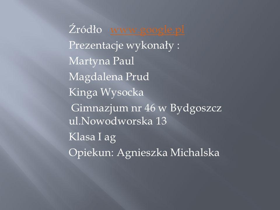 Źródło www.google.plwww.google.pl Prezentacje wykonały : Martyna Paul Magdalena Prud Kinga Wysocka Gimnazjum nr 46 w Bydgoszcz ul.Nowodworska 13 Klasa