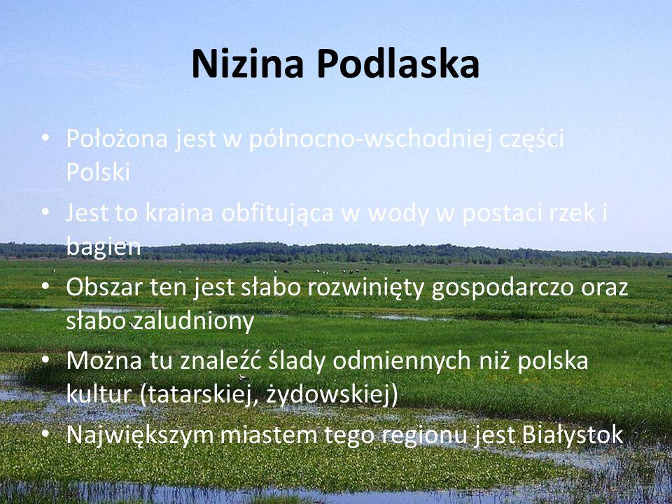 Nizina Podlaska Położona jest w północno-wschodniej części Polski Jest to kraina obfitująca w wody w postaci rzek i bagien Obszar ten jest słabo rozwi