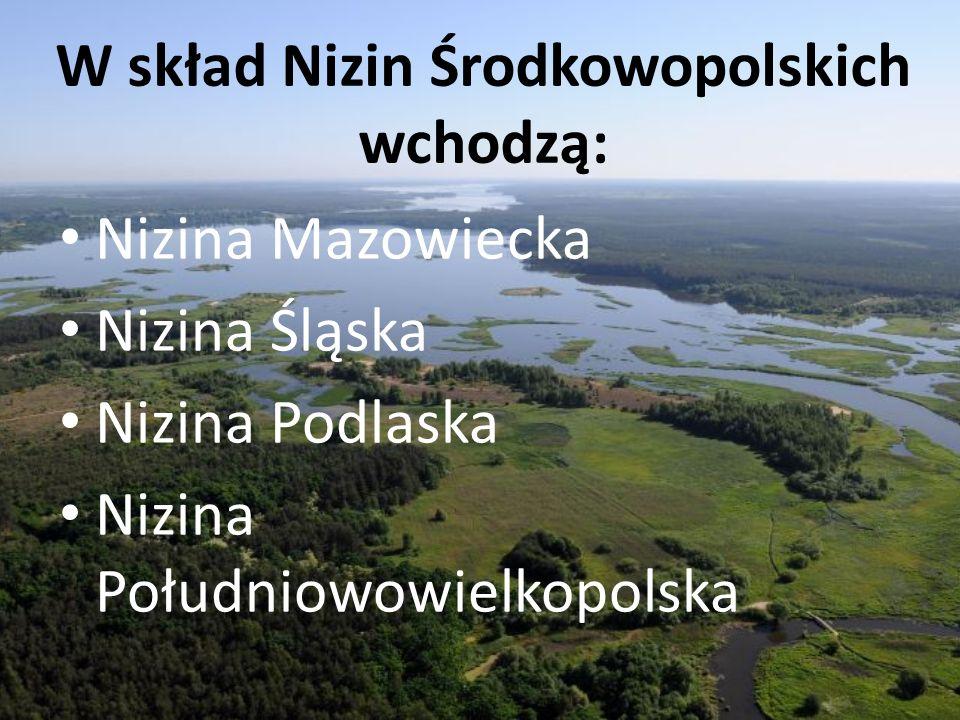 W skład Nizin Środkowopolskich wchodzą: Nizina Mazowiecka Nizina Śląska Nizina Podlaska Nizina Południowowielkopolska
