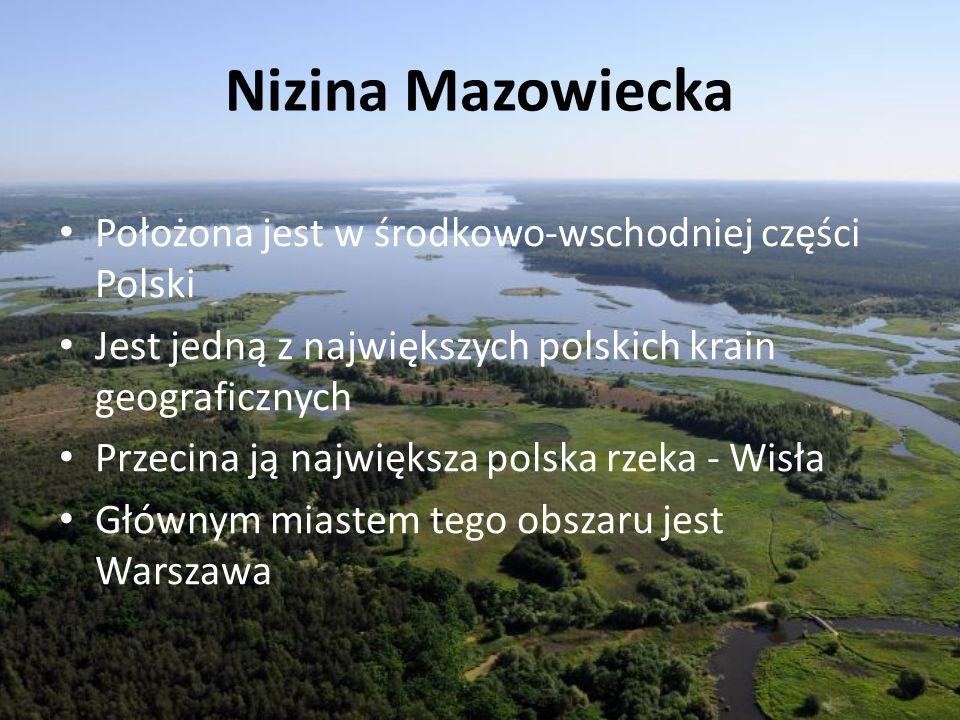 Nizina Mazowiecka Położona jest w środkowo-wschodniej części Polski Jest jedną z największych polskich krain geograficznych Przecina ją największa pol