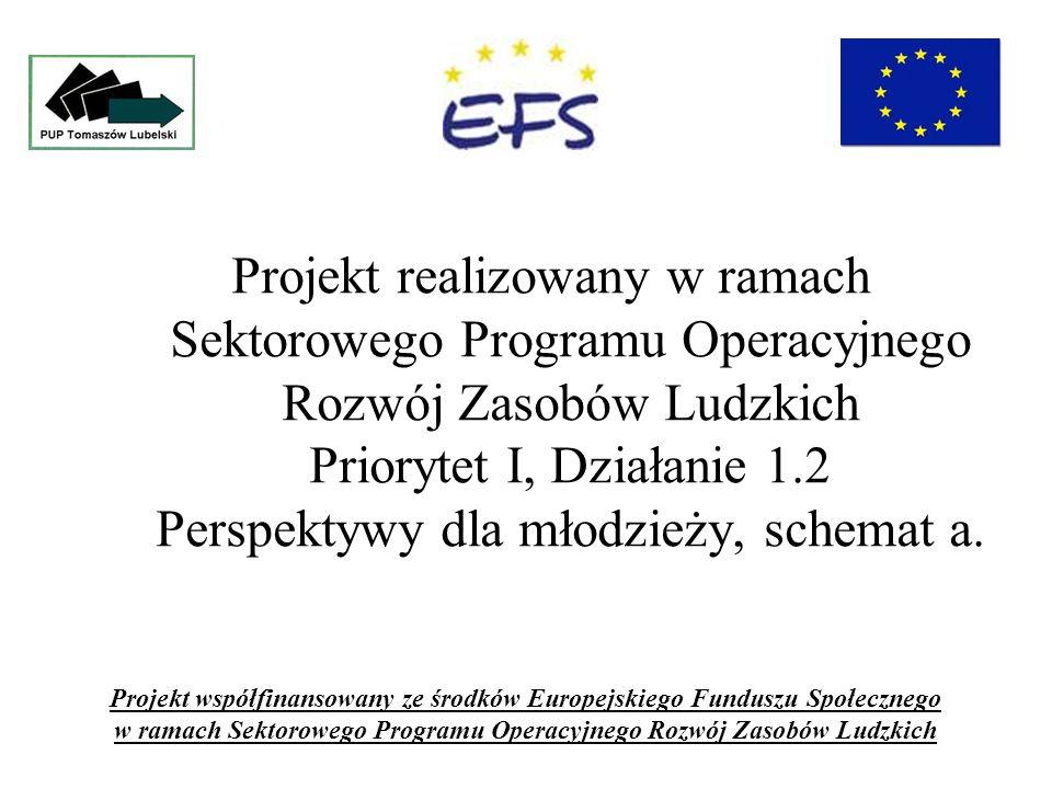 Projekt realizowany w ramach Sektorowego Programu Operacyjnego Rozwój Zasobów Ludzkich Priorytet I, Działanie 1.2 Perspektywy dla młodzieży, schemat a.