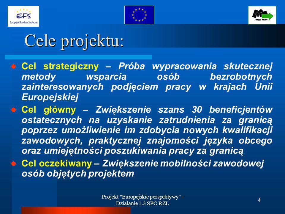 Projekt Europejskie perspektywy - Działanie 1.3 SPO RZL 4 Cele projektu: Cel strategiczny – Próba wypracowania skutecznej metody wsparcia osób bezrobotnych zainteresowanych podjęciem pracy w krajach Unii Europejskiej Cel główny – Zwiększenie szans 30 beneficjentów ostatecznych na uzyskanie zatrudnienia za granicą poprzez umożliwienie im zdobycia nowych kwalifikacji zawodowych, praktycznej znajomości języka obcego oraz umiejętności poszukiwania pracy za granicą Cel oczekiwany – Zwiększenie mobilności zawodowej osób objętych projektem