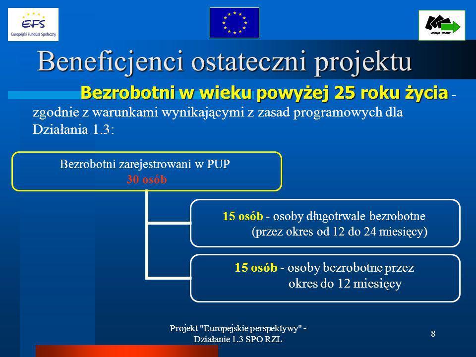 Projekt Europejskie perspektywy - Działanie 1.3 SPO RZL 19 Analiza realizacji projektu c.d.