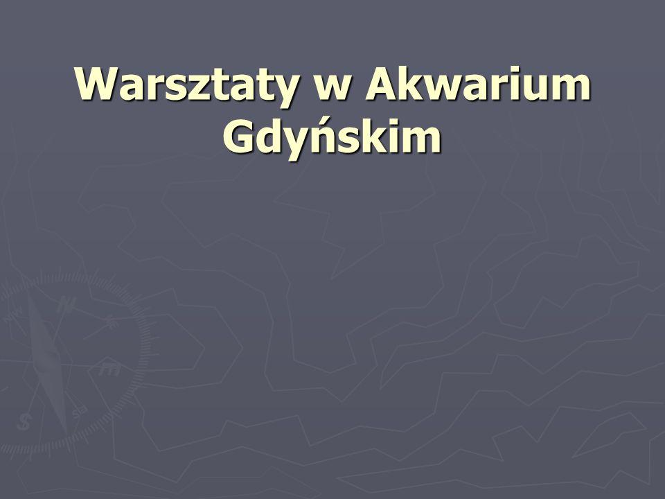 Warsztaty w Akwarium Gdyńskim