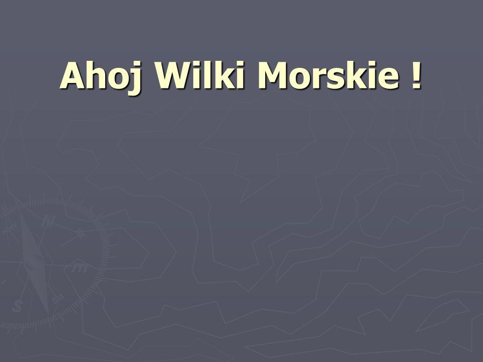 Ahoj Wilki Morskie !