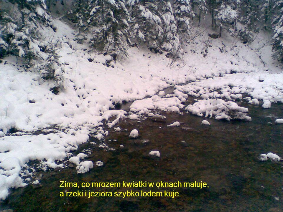Zima, co mrozem kwiatki w oknach maluje, a rzeki i jeziora szybko lodem kuje.