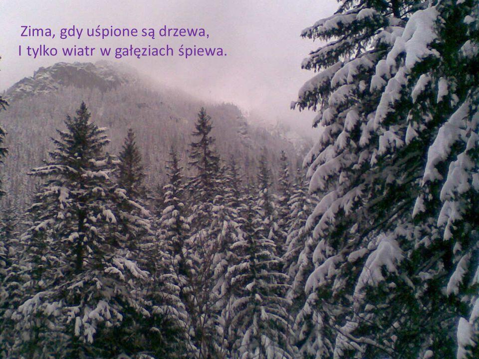 Zima, gdy uśpione są drzewa, I tylko wiatr w gałęziach śpiewa.