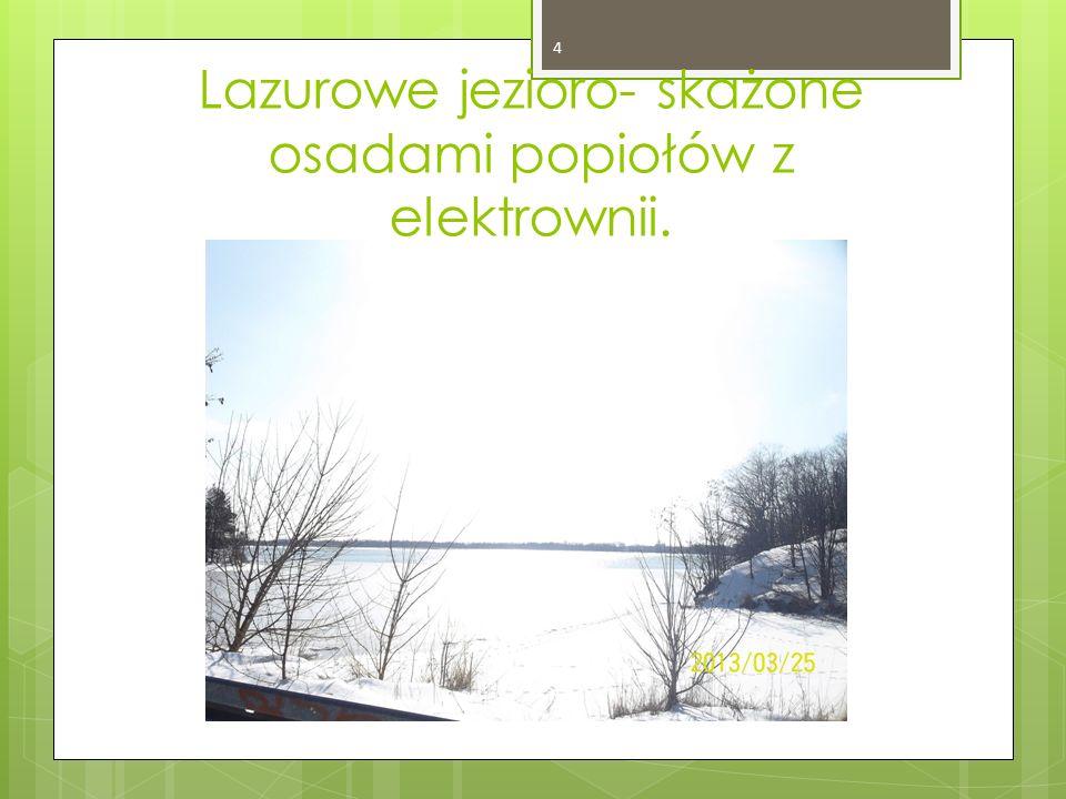 Lazurowe jezioro- skażone osadami popiołów z elektrownii. 4