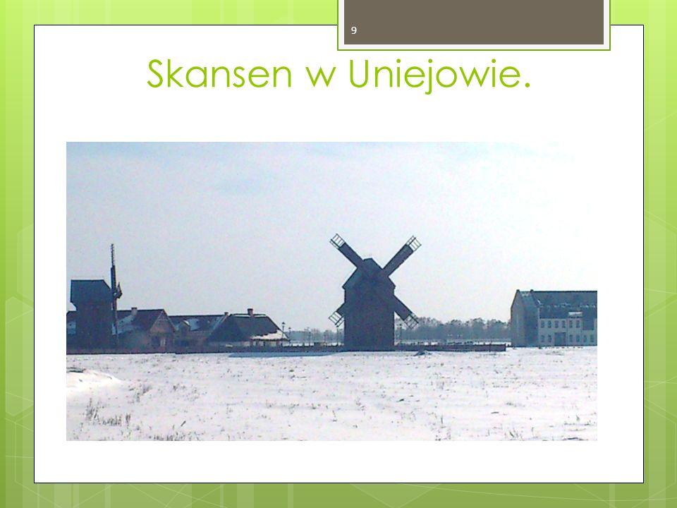 Skansen w Uniejowie. 9