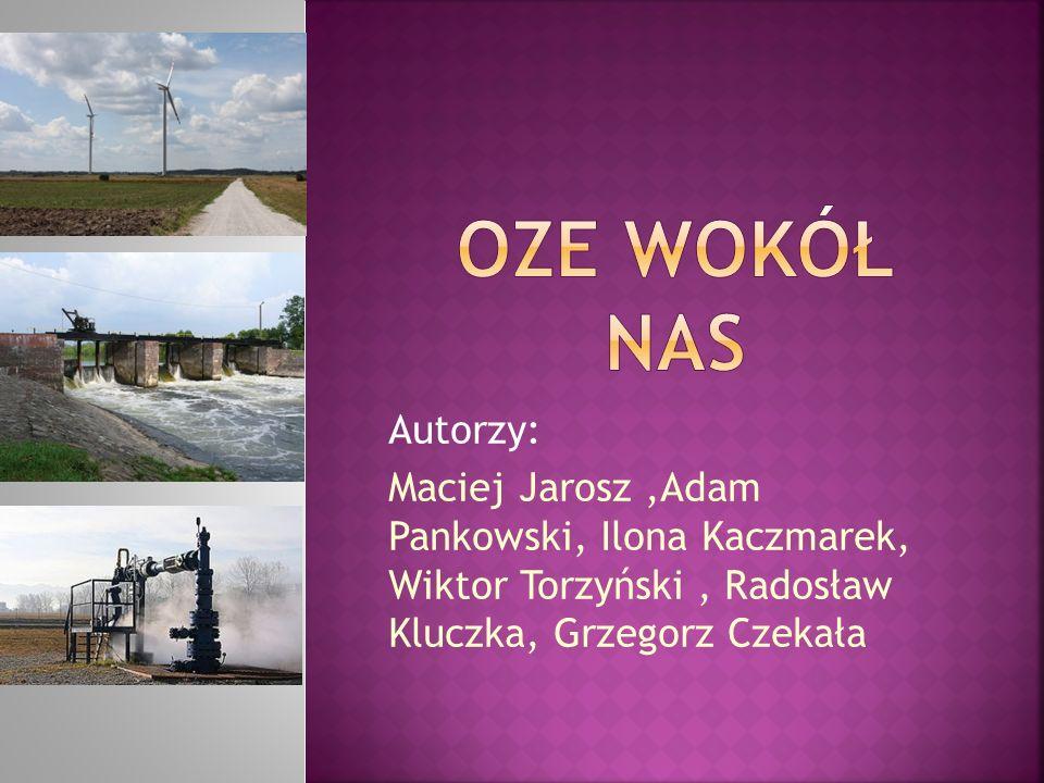Autorzy: Maciej Jarosz,Adam Pankowski, Ilona Kaczmarek, Wiktor Torzyński, Radosław Kluczka, Grzegorz Czekała