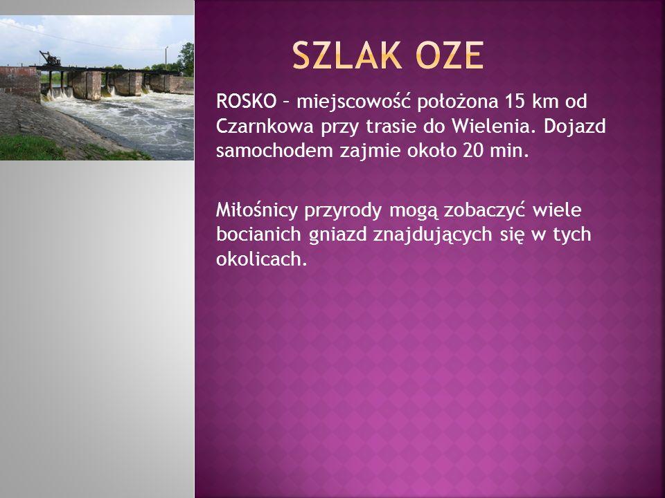 ROSKO – miejscowość położona 15 km od Czarnkowa przy trasie do Wielenia. Dojazd samochodem zajmie około 20 min. Miłośnicy przyrody mogą zobaczyć wiele