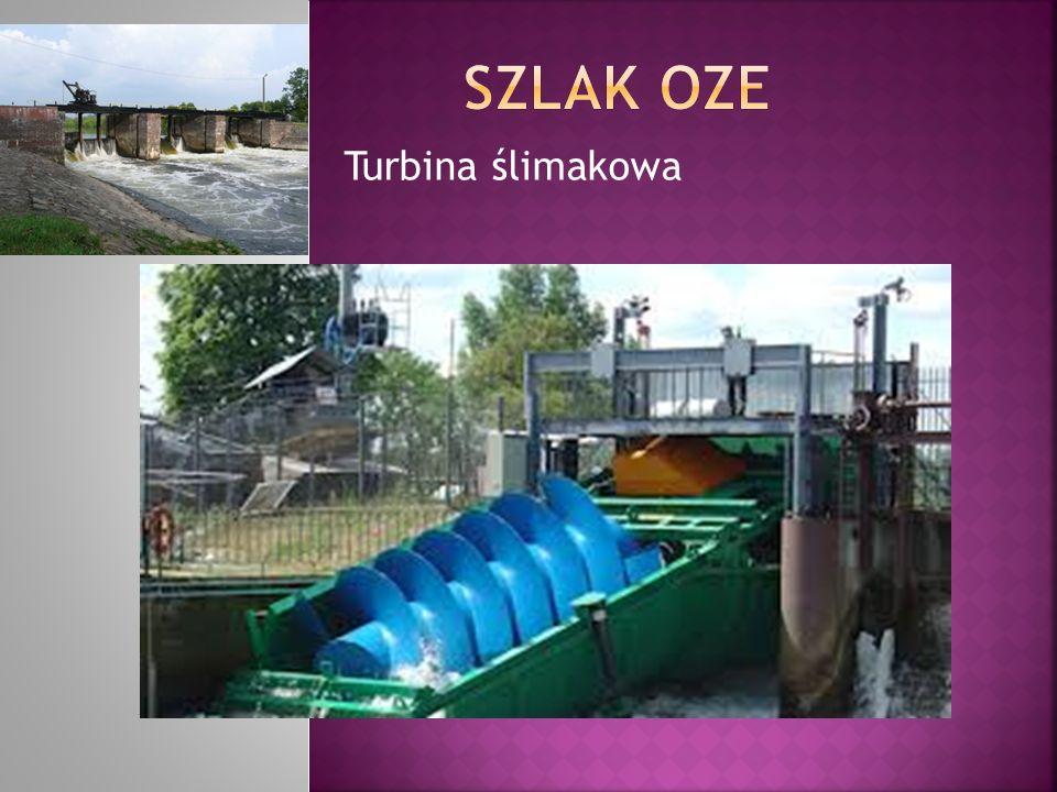 Turbina ślimakowa