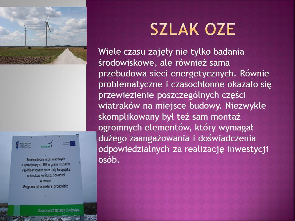 Wiele czasu zajęły nie tylko badania środowiskowe, ale również sama przebudowa sieci energetycznych. Równie problematyczne i czasochłonne okazało się