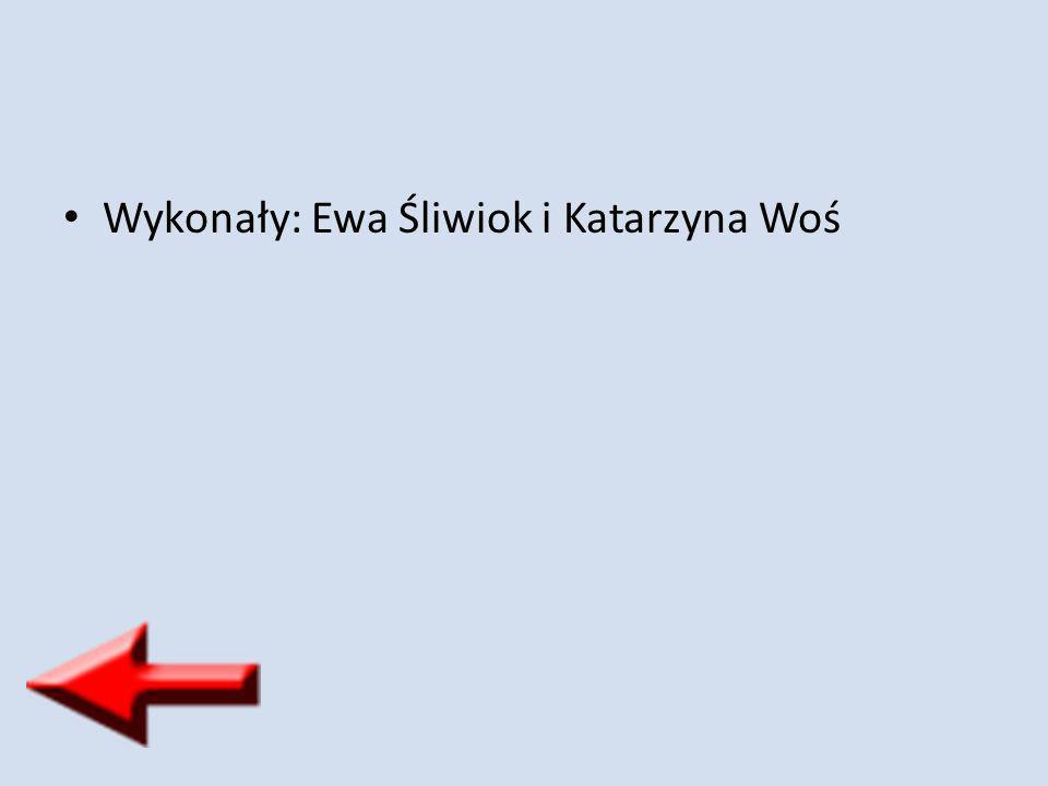 Wykonały: Ewa Śliwiok i Katarzyna Woś