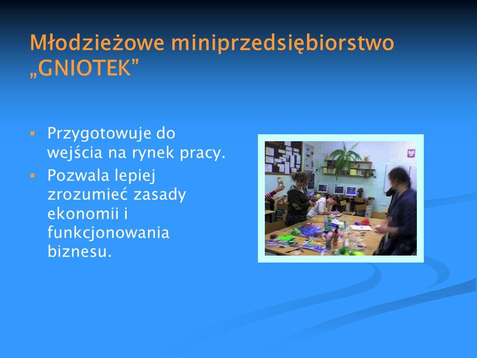 Młodzieżowe miniprzedsiębiorstwo GNIOTEK Przygotowuje do wejścia na rynek pracy. Pozwala lepiej zrozumieć zasady ekonomii i funkcjonowania biznesu.