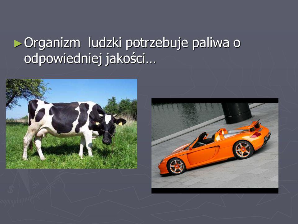 Organizm ludzki potrzebuje paliwa o odpowiedniej jakości… Organizm ludzki potrzebuje paliwa o odpowiedniej jakości…