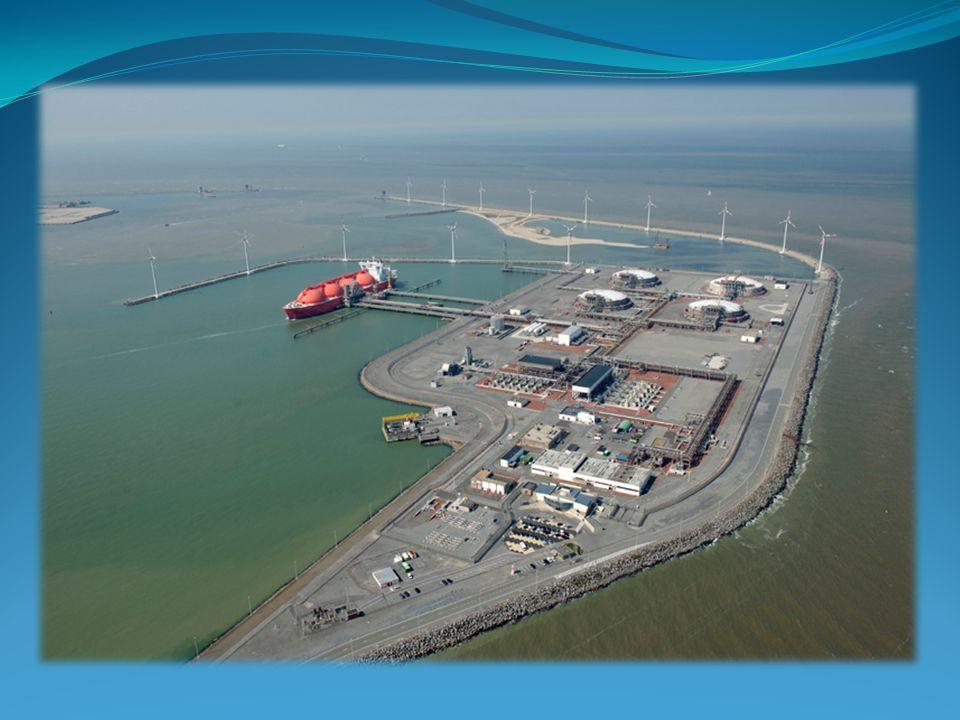 Terminal znajduje się w porcie zewnętrznym miasta Zeebrugge na powierzchni 30 hektarów.