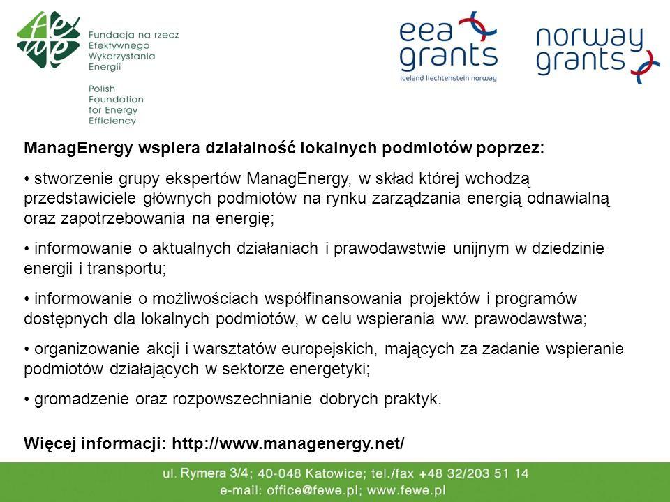 ManagEnergy wspiera działalność lokalnych podmiotów poprzez: stworzenie grupy ekspertów ManagEnergy, w skład której wchodzą przedstawiciele głównych podmiotów na rynku zarządzania energią odnawialną oraz zapotrzebowania na energię; informowanie o aktualnych działaniach i prawodawstwie unijnym w dziedzinie energii i transportu; informowanie o możliwościach współfinansowania projektów i programów dostępnych dla lokalnych podmiotów, w celu wspierania ww.