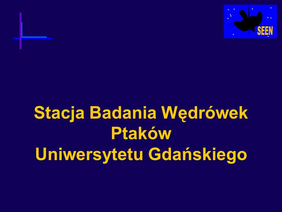 Stacja Badania Wędrówek Ptaków Uniwersytetu Gdańskiego Określanie płci Złożenie prawdopodobieństw wynikających z: 1.