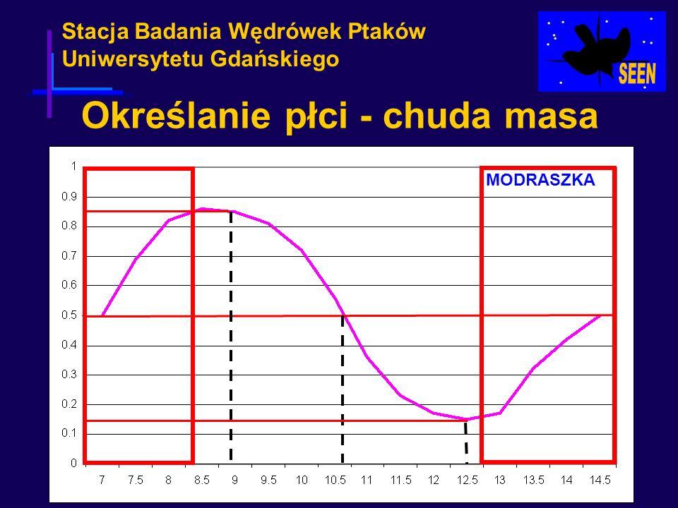 Stacja Badania Wędrówek Ptaków Uniwersytetu Gdańskiego Określanie płci - chuda masa MODRASZKA