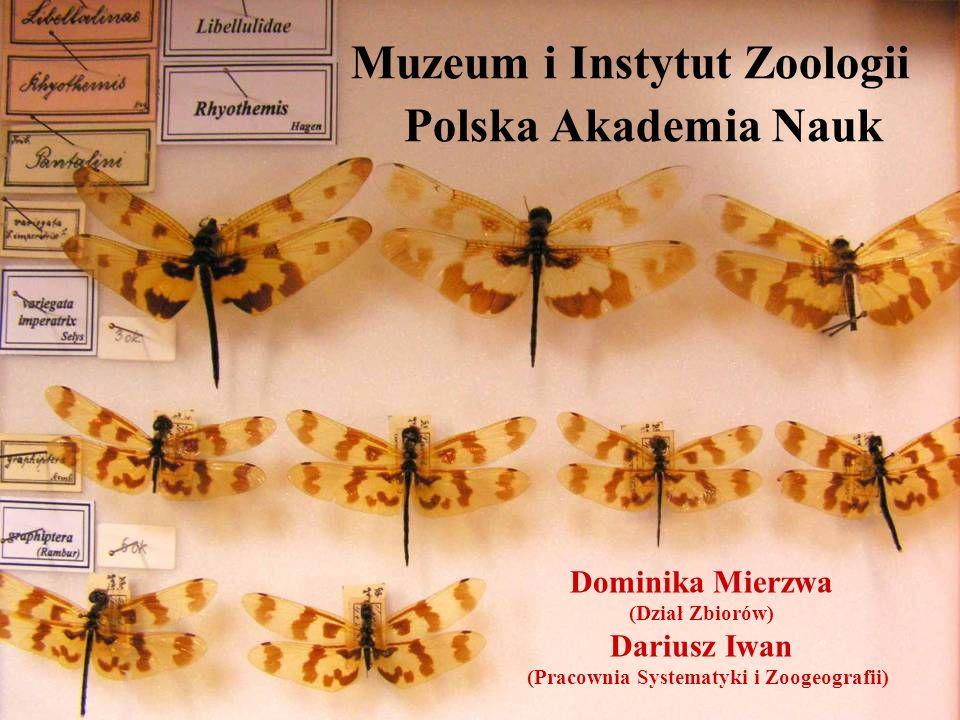 Muzeum i Instytut Zoologii Polska Akademia Nauk Dominika Mierzwa (Dział Zbiorów) Dariusz Iwan (Pracownia Systematyki i Zoogeografii)