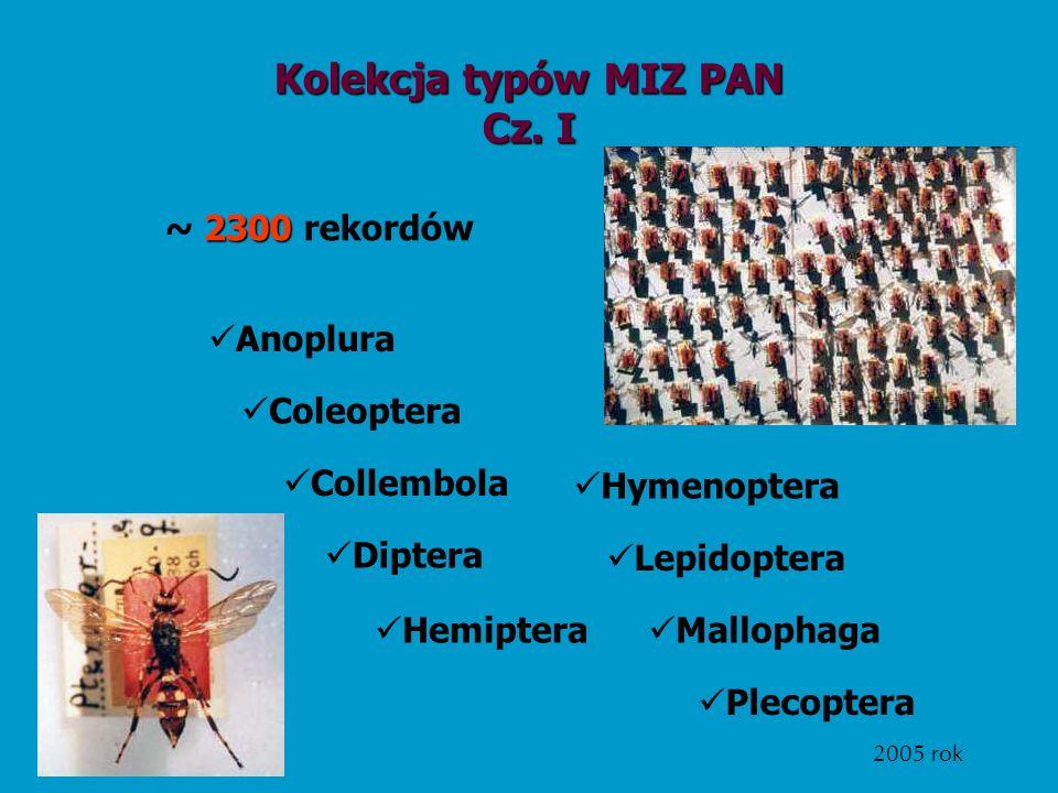 Kolekcja typów MIZ PAN Cz. I 2300 ~ 2300 rekordów Anoplura Coleoptera Collembola Diptera Hymenoptera Lepidoptera Mallophaga Hemiptera Plecoptera 2005