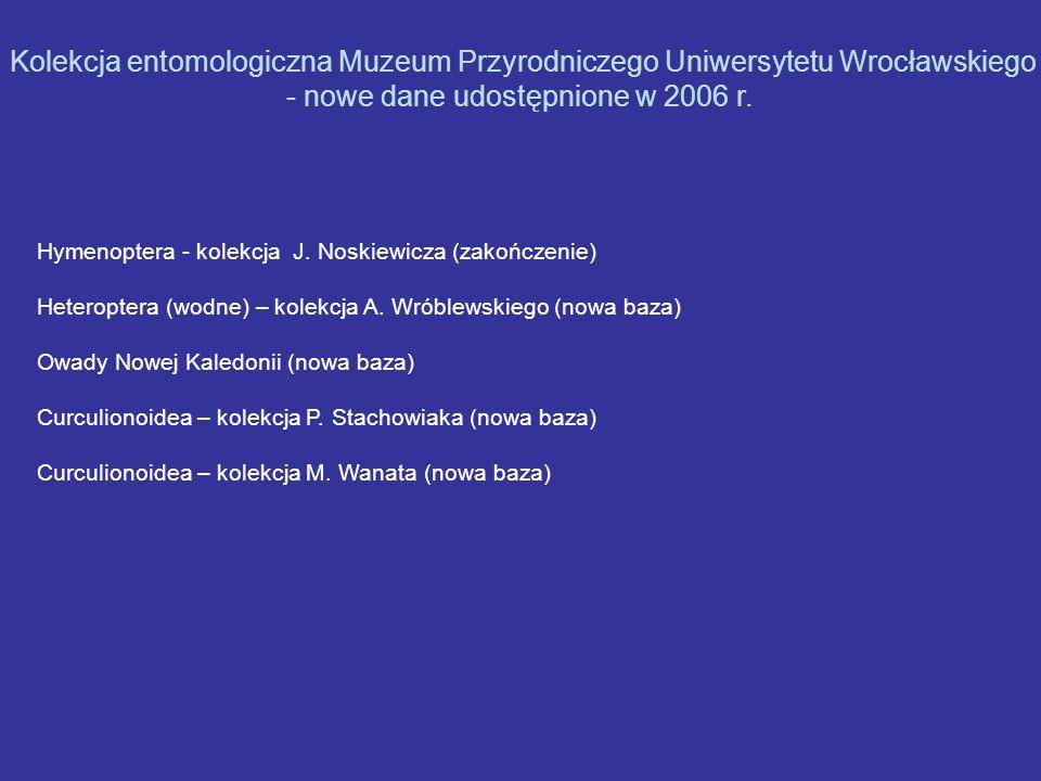 Hymenoptera - kolekcja J. Noskiewicza (zakończenie) Heteroptera (wodne) – kolekcja A. Wróblewskiego (nowa baza) Owady Nowej Kaledonii (nowa baza) Curc