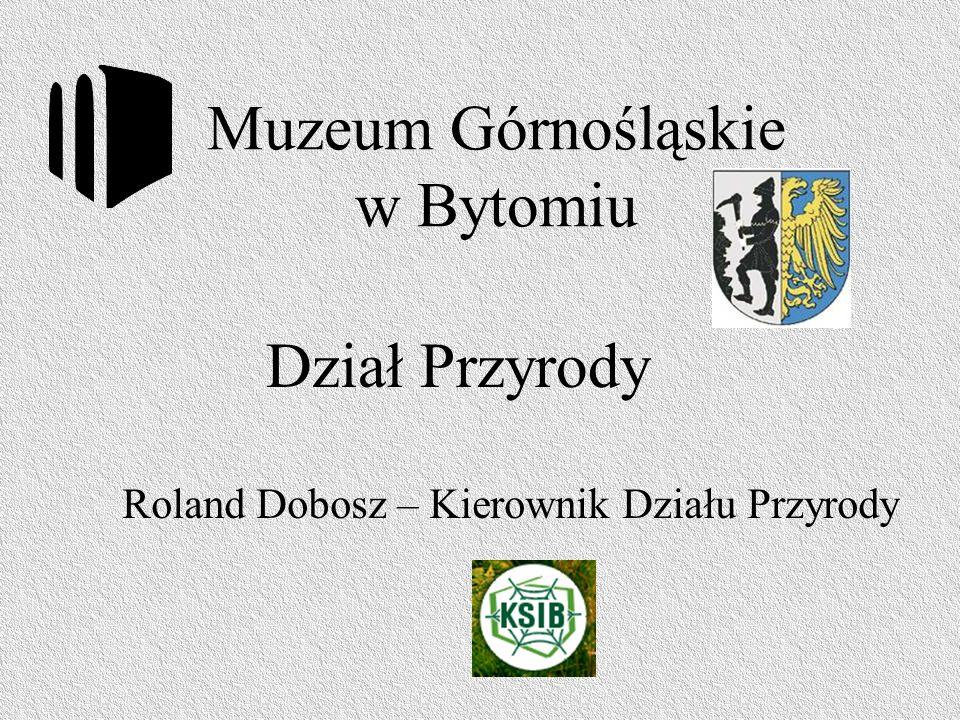 Muzeum Górnośląskie w Bytomiu Roland Dobosz – Kierownik Działu Przyrody Dział Przyrody