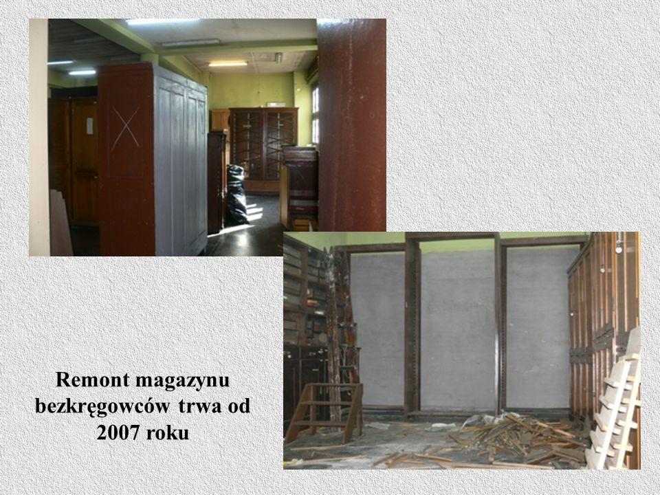 Remont magazynu bezkręgowców trwa od 2007 roku