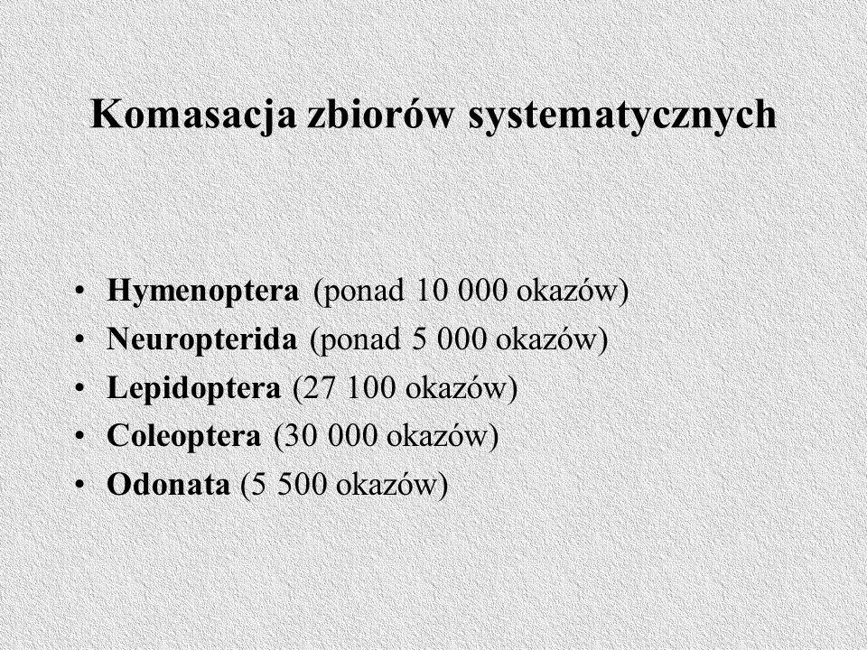 Komasacja zbiorów systematycznych Hymenoptera (ponad 10 000 okazów) Neuropterida (ponad 5 000 okazów) Lepidoptera (27 100 okazów) Coleoptera (30 000 okazów) Odonata (5 500 okazów)