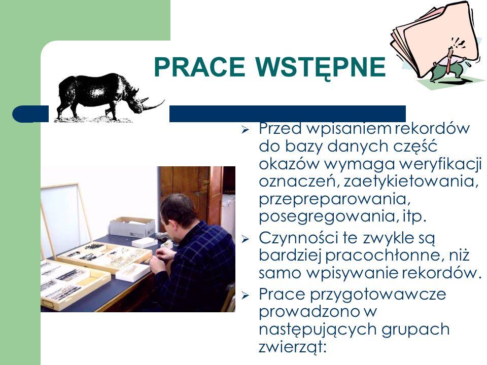 PRACE WSTĘPNE Przed wpisaniem rekordów do bazy danych część okazów wymaga weryfikacji oznaczeń, zaetykietowania, przepreparowania, posegregowania, itp