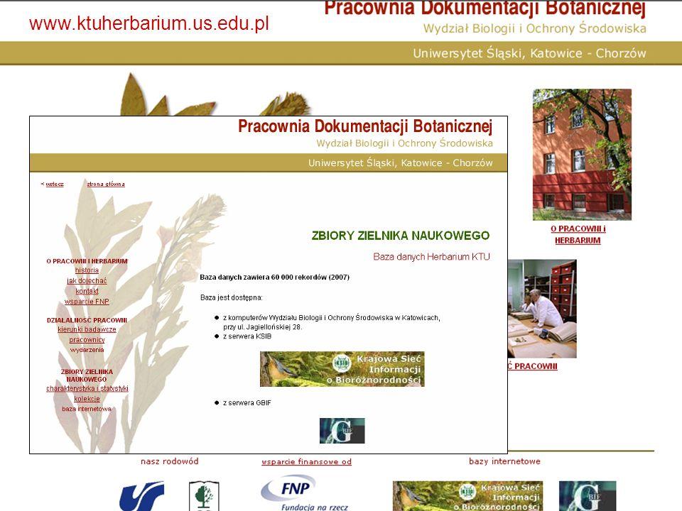 BAZA HERBARIUM (KTU) – rośliny naczyniowe Rok 2007 – 60000 rekordów W sieci ok..