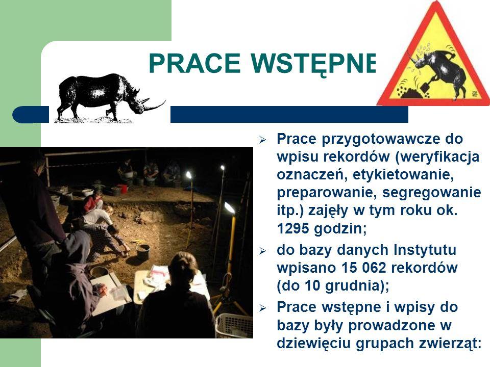 PRACE WSTĘPNE Prace przygotowawcze do wpisu rekordów (weryfikacja oznaczeń, etykietowanie, preparowanie, segregowanie itp.) zajęły w tym roku ok. 1295