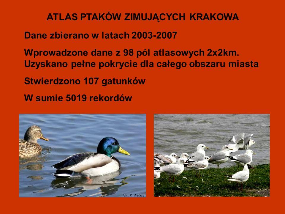 Dane zbierano w latach 2003-2007 Wprowadzone dane z 98 pól atlasowych 2x2km.