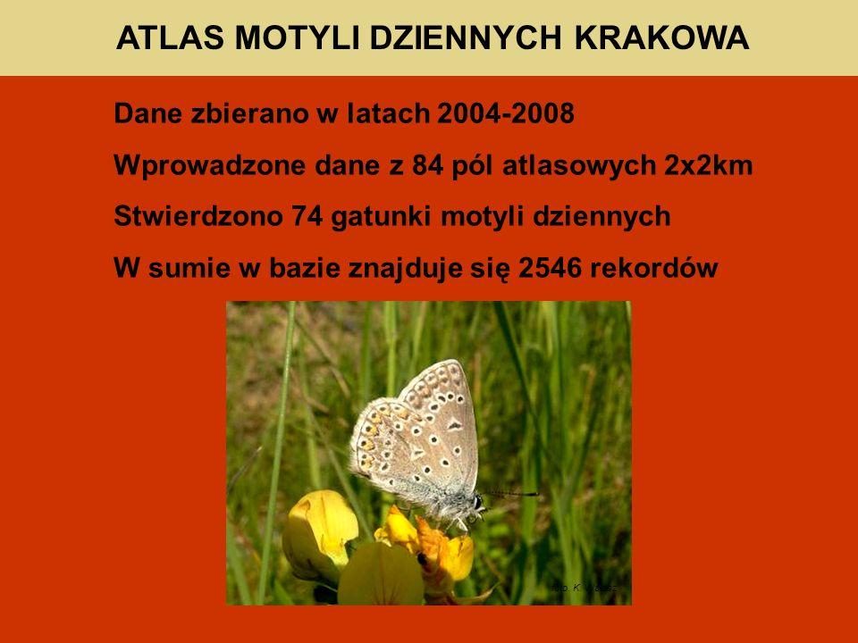 ATLAS MOTYLI DZIENNYCH KRAKOWA Dane zbierano w latach 2004-2008 Wprowadzone dane z 84 pól atlasowych 2x2km Stwierdzono 74 gatunki motyli dziennych W sumie w bazie znajduje się 2546 rekordów foto.