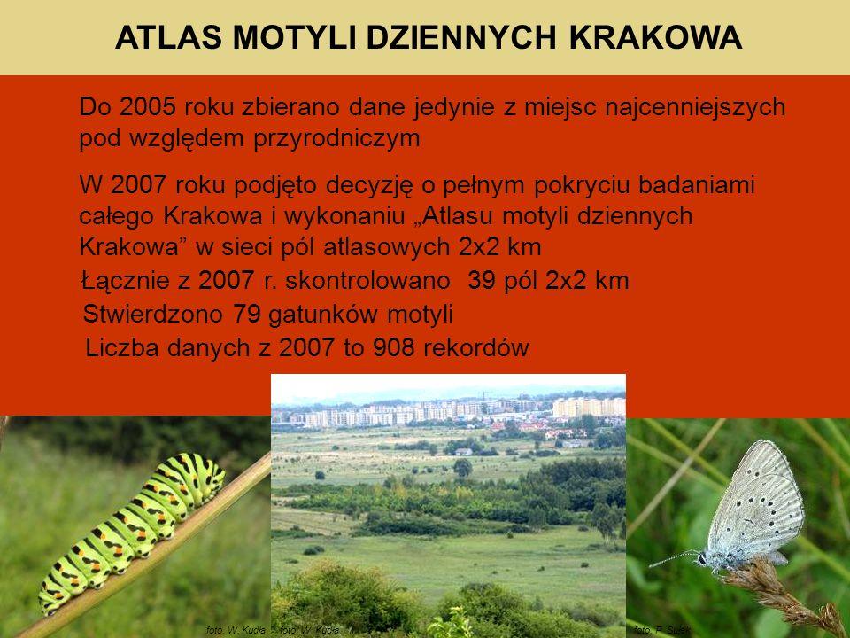 Do 2005 roku zbierano dane jedynie z miejsc najcenniejszych pod względem przyrodniczym W 2007 roku podjęto decyzję o pełnym pokryciu badaniami całego Krakowa i wykonaniu Atlasu motyli dziennych Krakowa w sieci pól atlasowych 2x2 km foto.