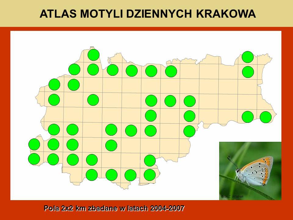 ATLAS MOTYLI DZIENNYCH KRAKOWA foto. Z. Wiatrak Pola 2x2 km zbadane w latach 2004-2007