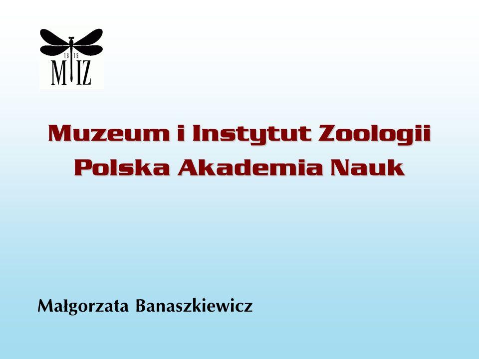 Muzeum i Instytut Zoologii Polska Akademia Nauk Ma ł gorzata Banaszkiewicz