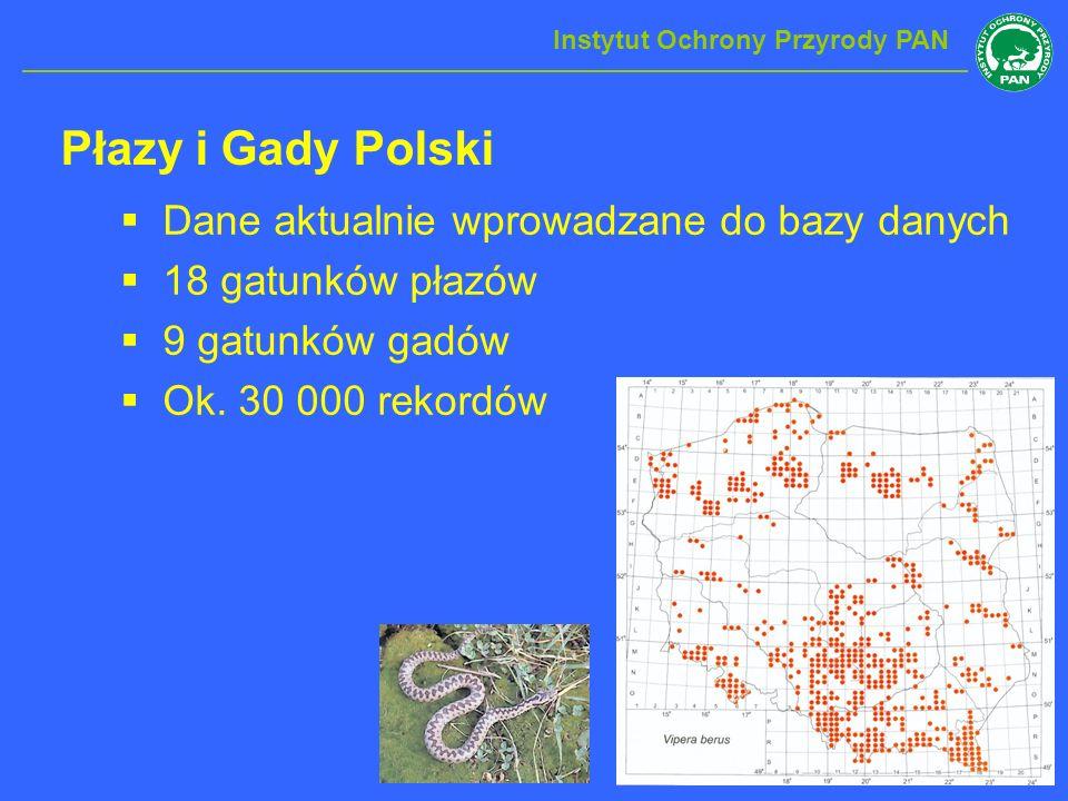 Płazy i Gady Polski Instytut Ochrony Przyrody PAN Dane aktualnie wprowadzane do bazy danych 18 gatunków płazów 9 gatunków gadów Ok. 30 000 rekordów