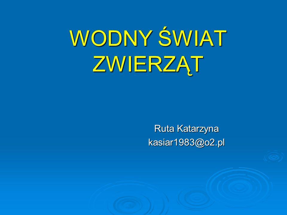 WODNY ŚWIAT ZWIERZĄT Ruta Katarzyna kasiar1983@o2.pl