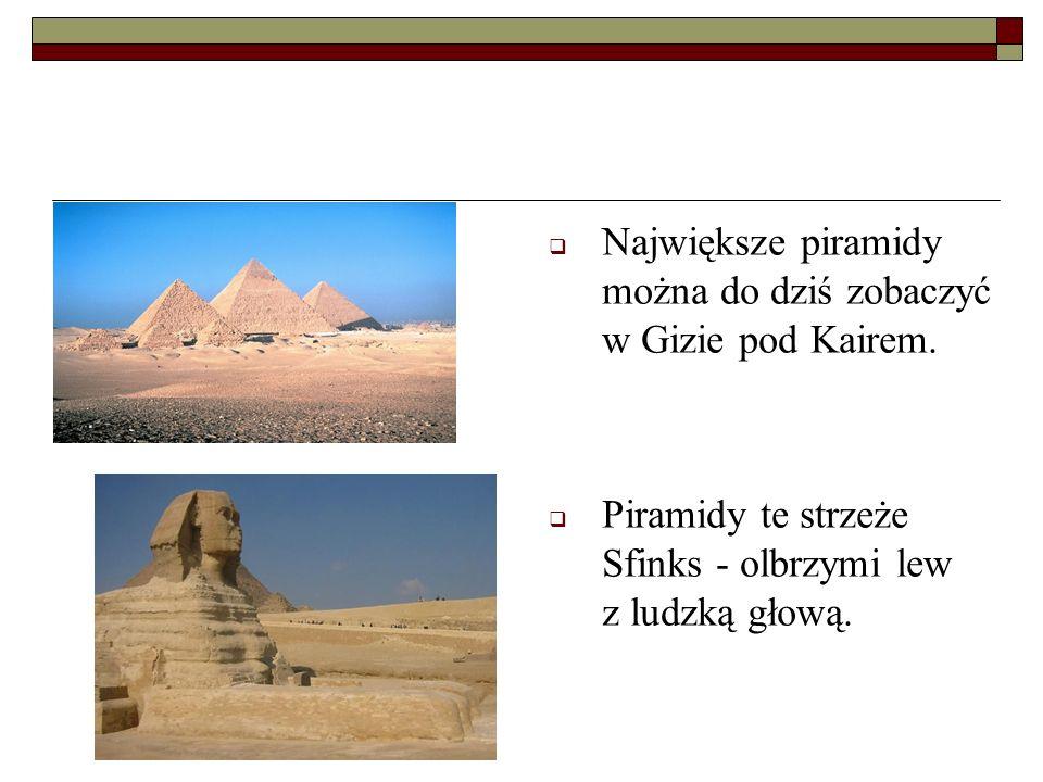 Największe piramidy można do dziś zobaczyć w Gizie pod Kairem. Piramidy te strzeże Sfinks - olbrzymi lew z ludzką głową.