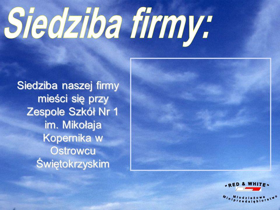 Plakat promujący teczki i kartki świąteczne Plakat promujący działalność przedsiębiorstwa