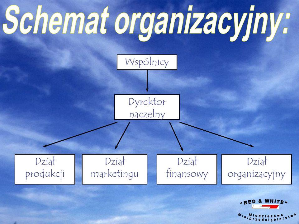 Wspólnicy Dyrektor naczelny Dział produkcji Dział marketingu Dział finansowy Dział organizacyjny