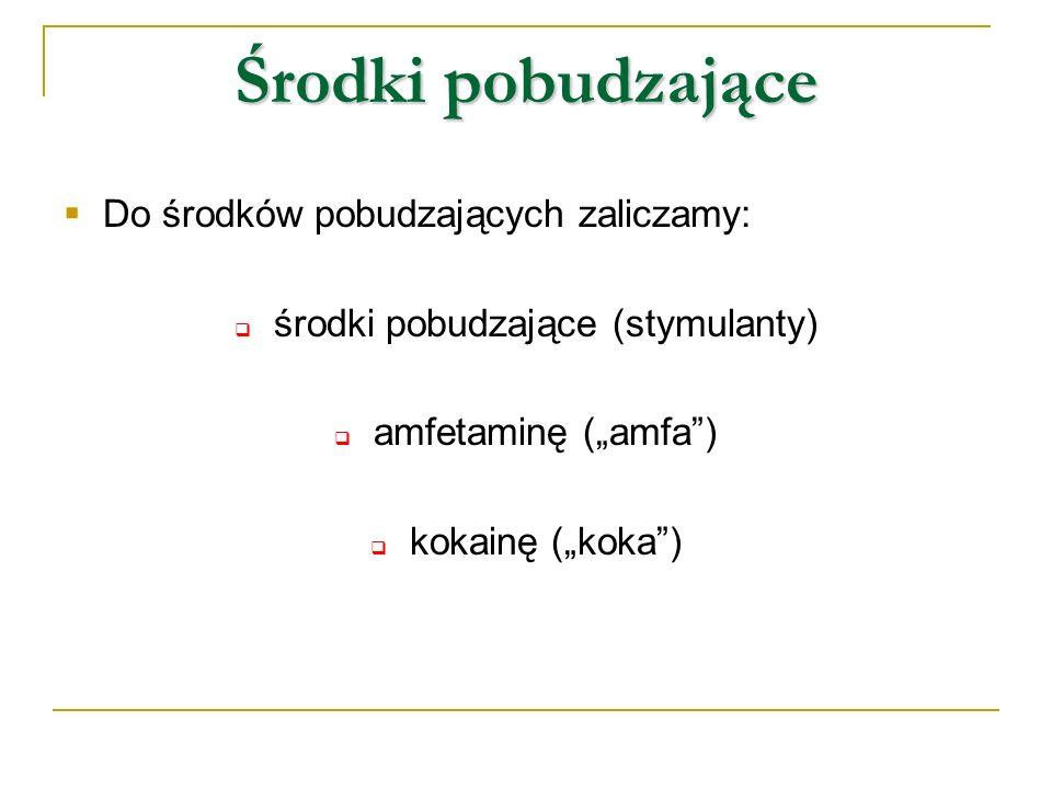 Środki pobudzające Do środków pobudzających zaliczamy: środki pobudzające (stymulanty) amfetaminę (amfa) kokainę (koka)