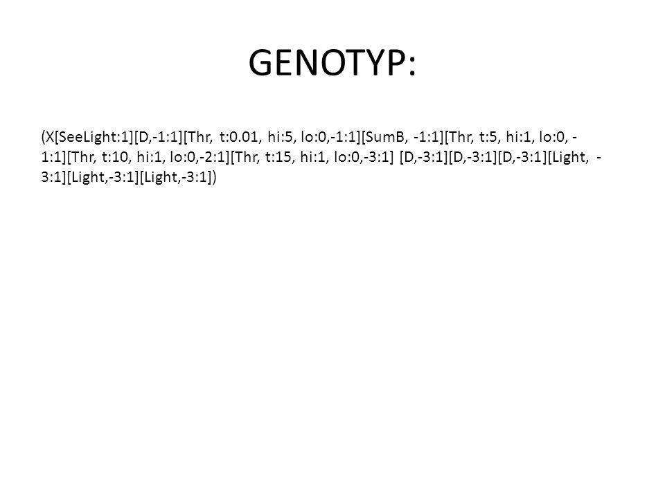 GENOTYP: (X[SeeLight:1][D,-1:1][Thr, t:0.01, hi:5, lo:0,-1:1][SumB, -1:1][Thr, t:5, hi:1, lo:0, - 1:1][Thr, t:10, hi:1, lo:0,-2:1][Thr, t:15, hi:1, lo:0,-3:1] [D,-3:1][D,-3:1][D,-3:1][Light, - 3:1][Light,-3:1][Light,-3:1])