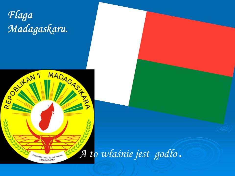 Flaga Madagaskaru. A to właśnie jest godło.