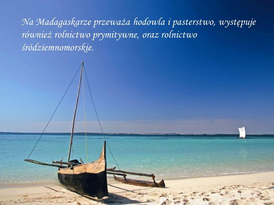 Na Madagaskarze przeważa hodowla i pasterstwo, występuje również rolnictwo prymitywne, oraz rolnictwo śródziemnomorskie.