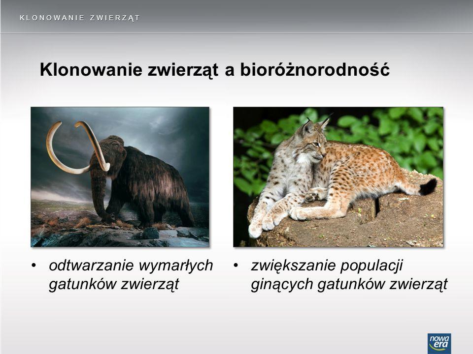 KLONOWANIE ZWIERZĄT Klonowanie zwierząt a bioróżnorodność odtwarzanie wymarłych gatunków zwierząt zwiększanie populacji ginących gatunków zwierząt