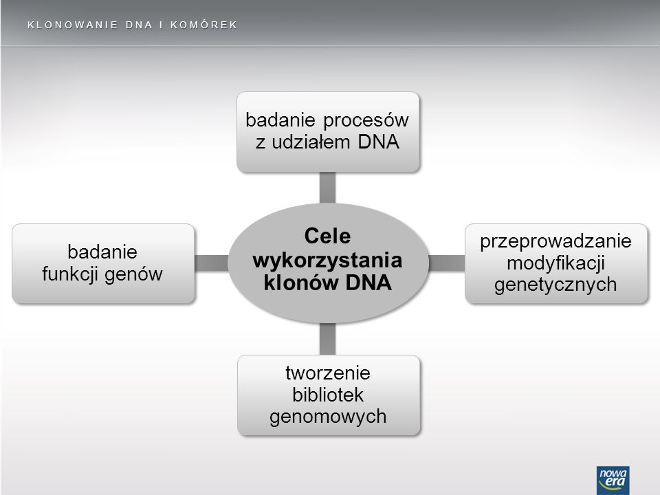 KLONOWANIE DNA I KOMÓREK badanie funkcji genów tworzenie bibliotek genomowych przeprowadzanie modyfikacji genetycznych badanie procesów z udziałem DNA