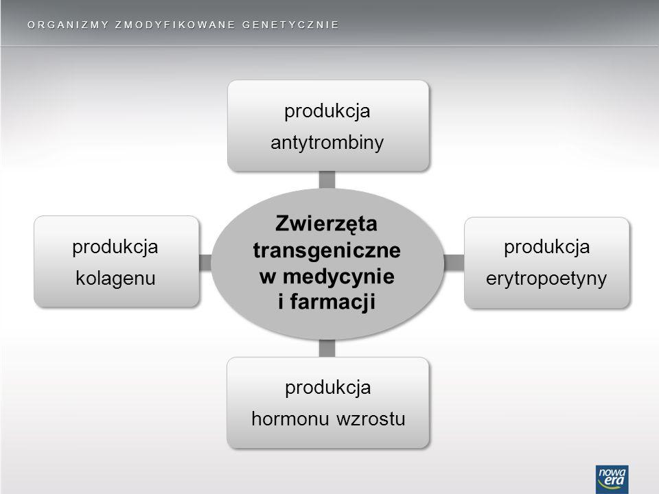 ORGANIZMY ZMODYFIKOWANE GENETYCZNIE produkcja kolagenu produkcja hormonu wzrostu produkcja erytropoetyny produkcja antytrombiny Zwierzęta transgeniczne w medycynie i farmacji